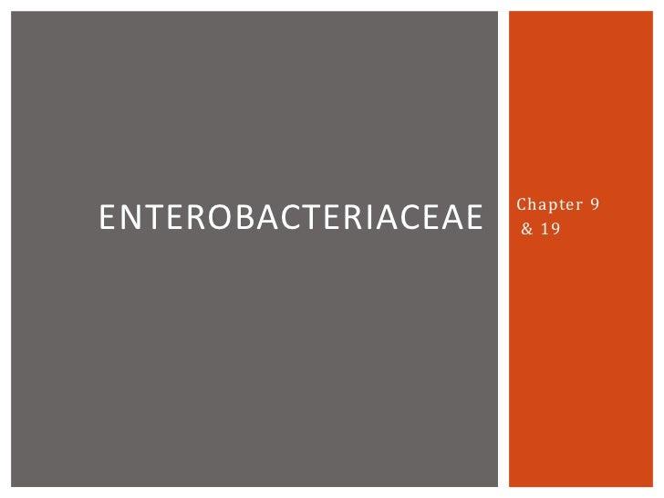 16  -chapter_19_-_enterobacteriaceae
