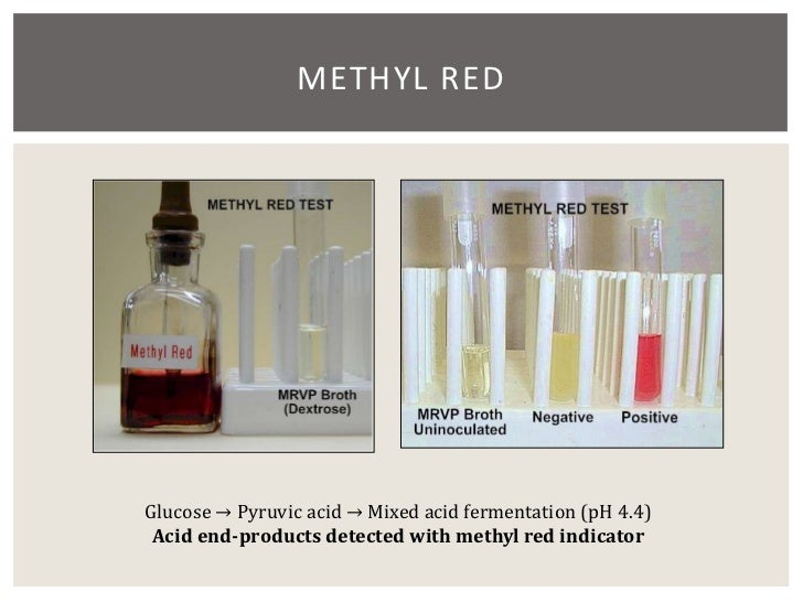 methyl red test essay Obtained from the coupling is the bright red acid form of methyl orange, called methyl orange 6 in a test tube a diels-alder synthesis.