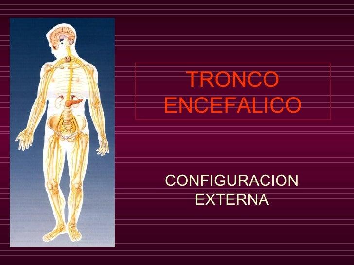 TRONCO ENCEFALICO CONFIGURACION EXTERNA