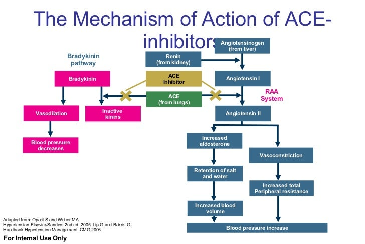 Ace Inhibitors And Viagra