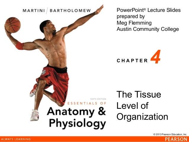 163 ch 04_lecture_presentation