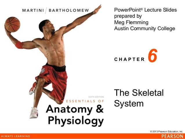 163 ch 06_lecture_presentation