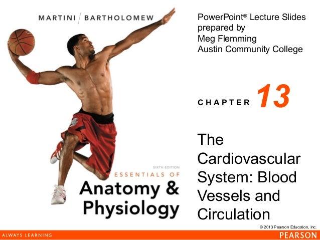 163 ch 13_lecture_presentation