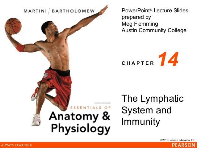 163 ch 14_lecture_presentation