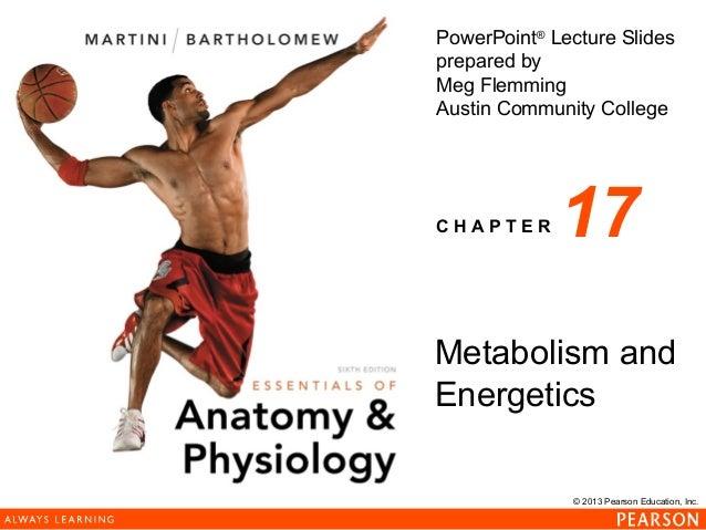 163 ch 17_lecture_presentation