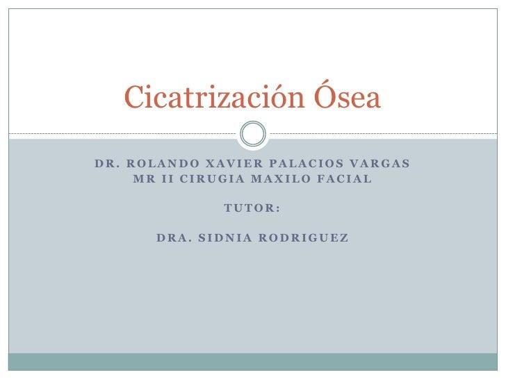 Dr. Rolando Xavier Palacios Vargas<br />MriiCirugiaMaxilo facial<br />Tutor:<br />Dra. SidniaRodriguez<br />Cicatrización ...