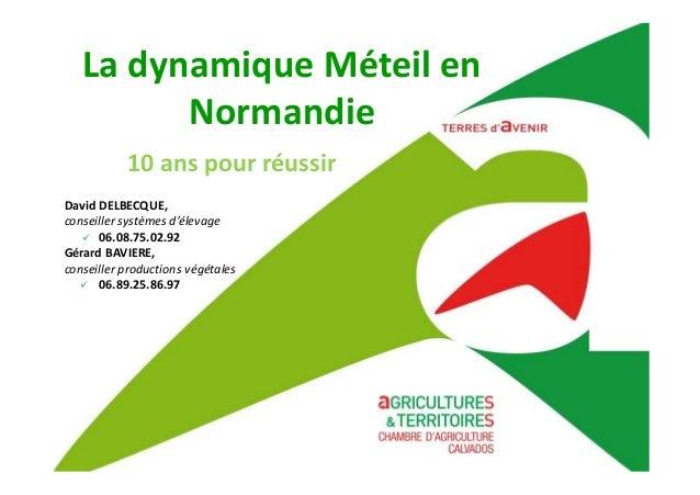 La dynamique Méteil en Normandie David DELBECQUE, conseiller systèmes d'élevage 06.08.75.02.92 Gérard BAVIERE, conseiller ...