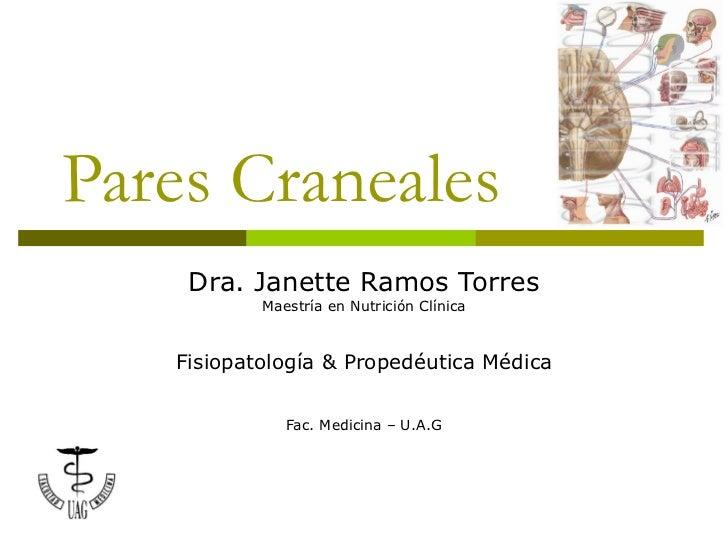 17 pares-craneales-1201130538583042-4
