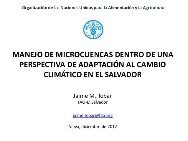 Organización de las Naciones Unidas para la Alimentación y la AgriculturaMANEJO DE MICROCUENCAS DENTRO DE UNA PERSPECTIVA ...