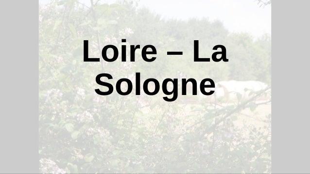 Loire – La Sologne