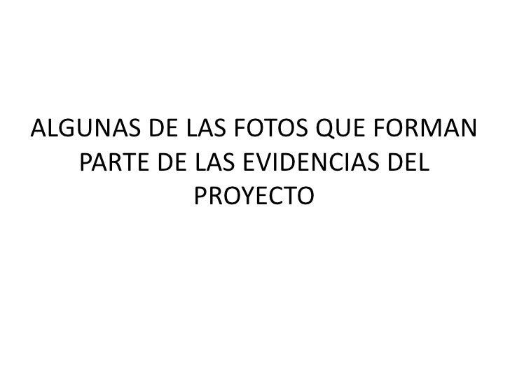 ALGUNAS DE LAS FOTOS QUE FORMAN PARTE DE LAS EVIDENCIAS DEL PROYECTO<br />