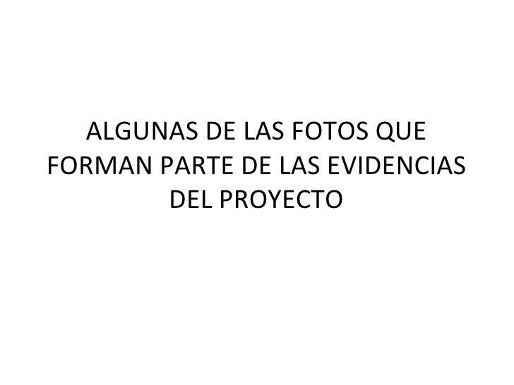 ALGUNAS DE LAS FOTOS QUE FORMAN PARTE DE LAS EVIDENCIAS DEL PROYECTO