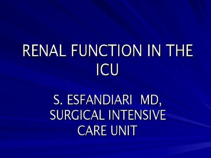 Renal Function in ICU