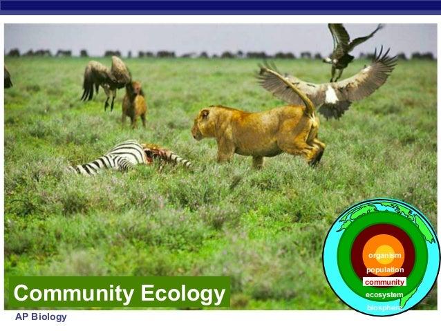 17 ch54communityecology2008