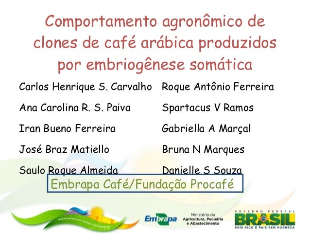 Comportamento agronômico de clones de café arábica produzidos por embriogênese somática Carlos Henrique S. Carvalho Roque ...
