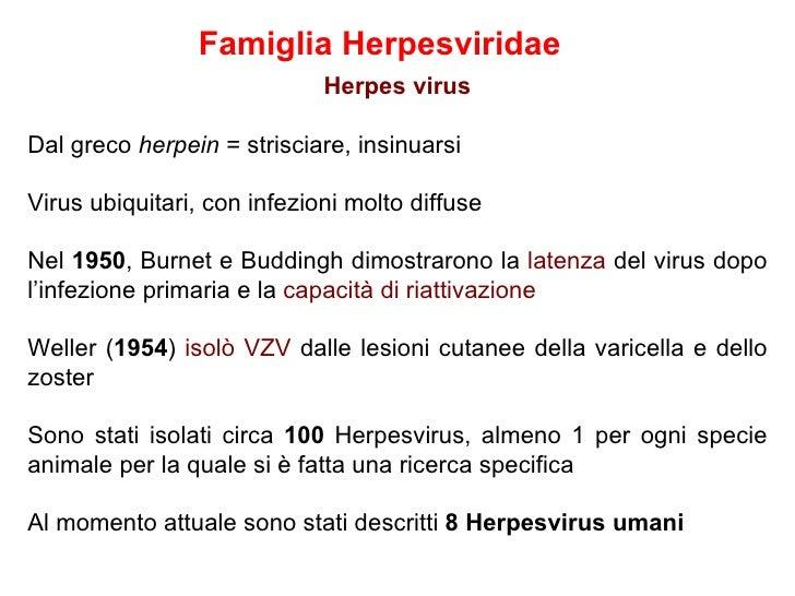 Famiglia Herpesviridae                             Herpes virusDal greco herpein = strisciare, insinuarsiVirus ubiquitari,...