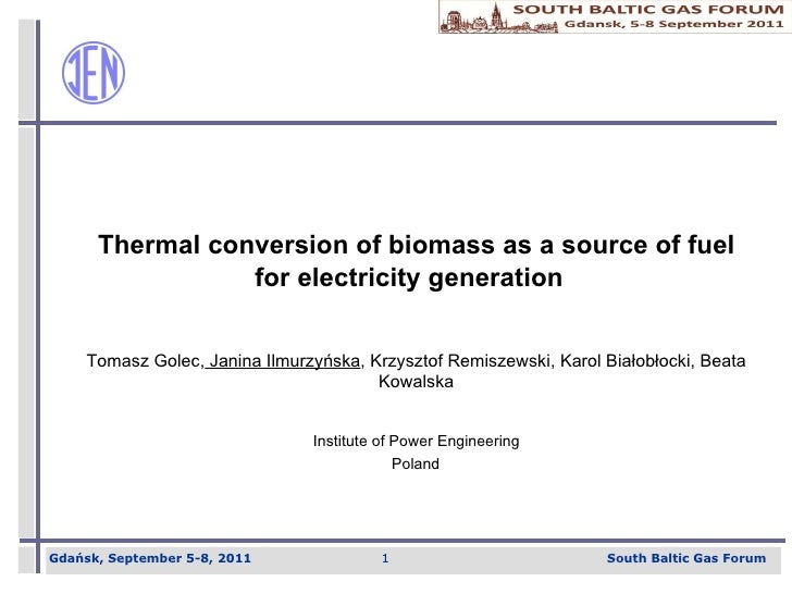Thermal conversion of biomass as a source of fuel for electricity generation  Tomasz Golec,   Janina Ilmurzy ń ska , Krzys...