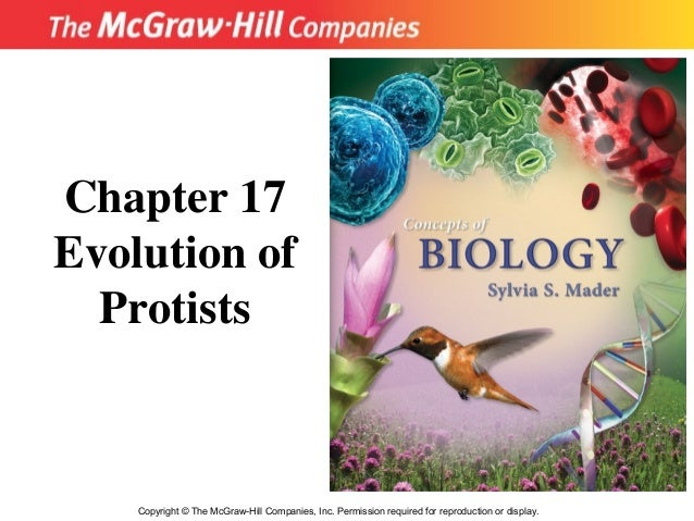 Chapter 17Evolution of  Protists    Copyright © The McGraw-Hill Companies, Inc. Permission required for reproduction or di...