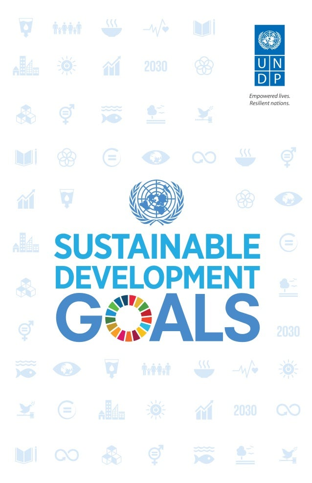 17 Sustainable Development Goals Un