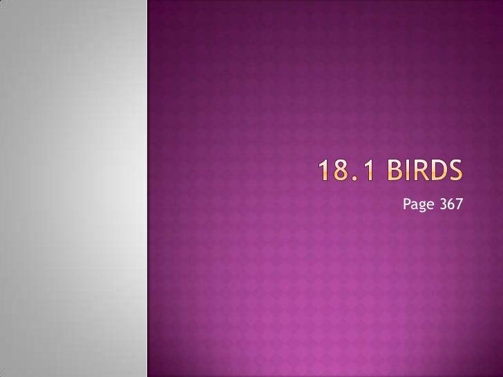 18.1 Birds<br />Page 367<br />