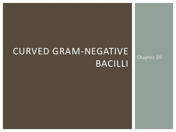 CURVED GRAM-NEGATIVE    Chapter 20              BACILLI