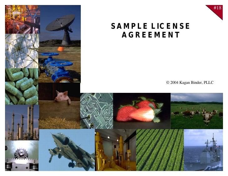 18 License Agreement