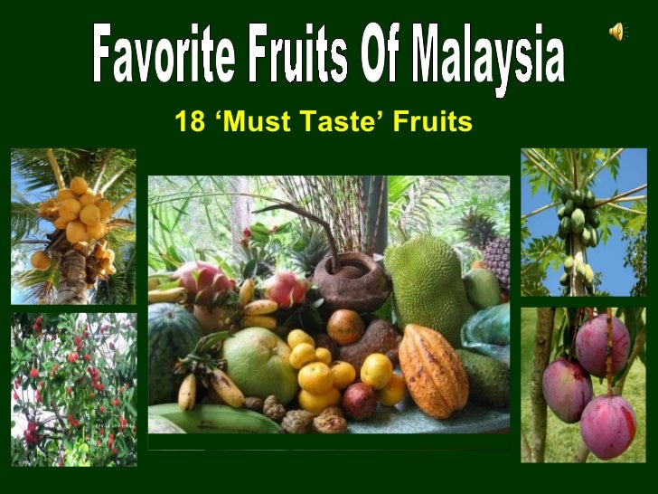 Favorite Fruits Of Malaysia 18 'Must Taste' Fruits