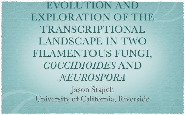 Evolution and exploration of the transcriptional landscape in two filamentous fungi, Coccidioides and Neurospora