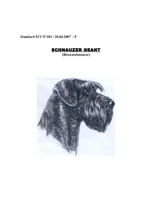 Standard FCI N°181 / 18.04.2007 / F  SCHNAUZER GEANT (Riesenschnauzer)