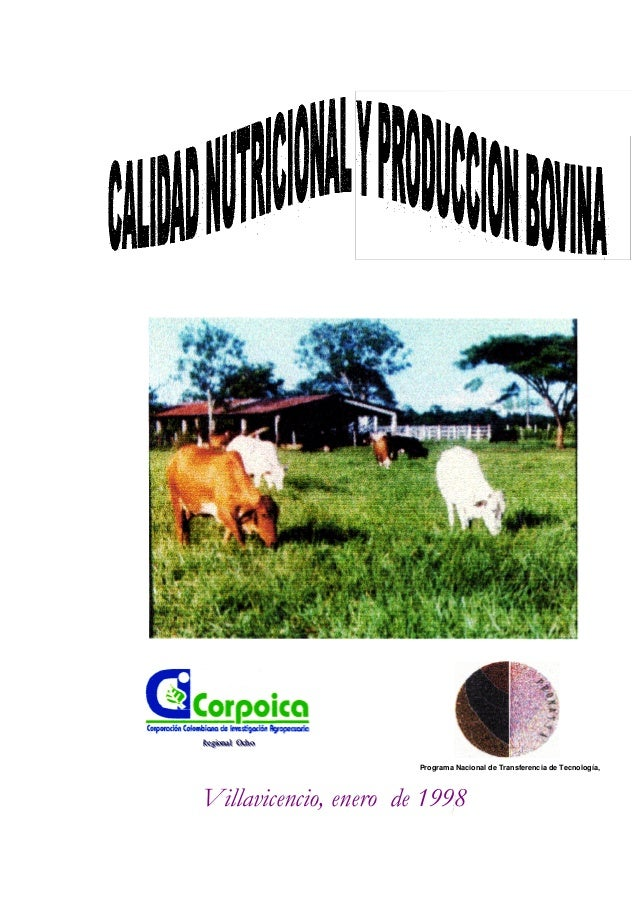Programa Nacional de Transferencia de Tecnología, Villavicencio, enero de 1998 RRReeegggiiiooonnnaaalll OOOccchhhooo