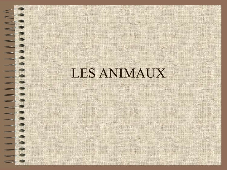 18773 22107 Source[1] Animaux