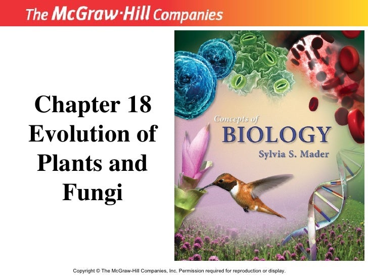 Copyright  ©  The McGraw-Hill Companies, Inc. Permission required for reproduction or display. Chapter 18 Evolution of Pla...