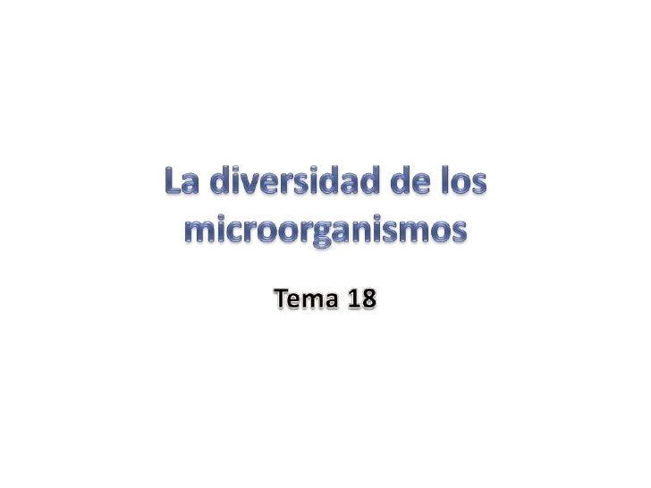 18microorganismos 110413172016-phpapp02