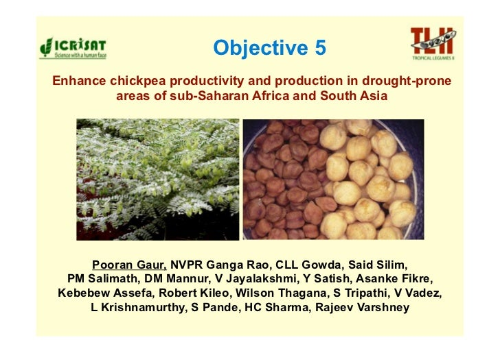 Objective 5 Enhance chickpea productivity and production in drought-prone          areas of sub-Saharan Africa and South A...