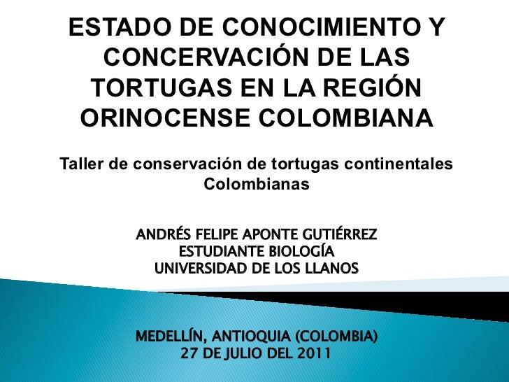 ESTADO DE CONOCIMIENTO Y   CONCERVACIÓN DE LAS  TORTUGAS EN LA REGIÓN ORINOCENSE COLOMBIANATaller de conservación de tortu...