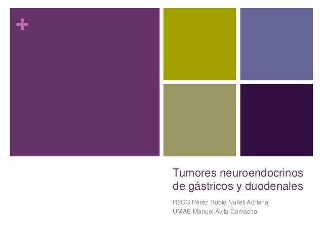 + Tumores neuroendocrinos de gástricos y duodenales R2CG Pérez Rubio Nalleli Adriana UMAE Manuel Ávila Camacho