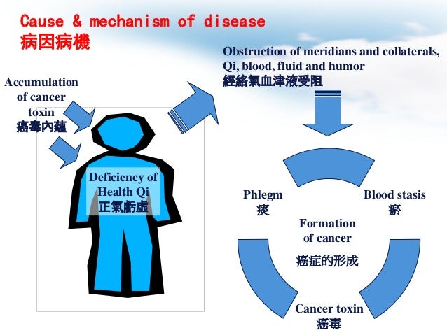 colorectal cancer phd thesis Writing college papers phd thesis on colorectal cancer a homework helper help with chinese homework.