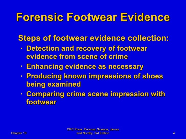 report on collecting forensic evidence