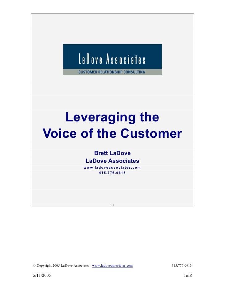 Leveraging the      Voice of the Customer                                  Brett LaDove                                LaD...