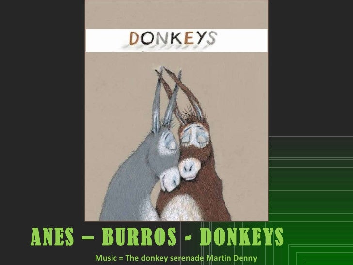 ANES – BURROS - DONKEYS   Music = The donkey serenade Martin Denny