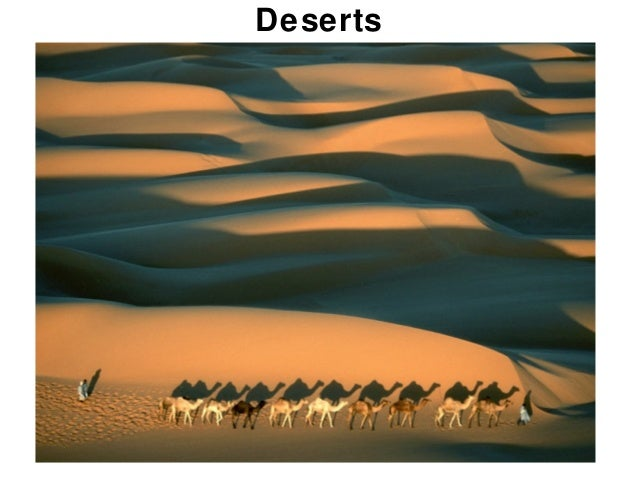Chapter 21Deserts
