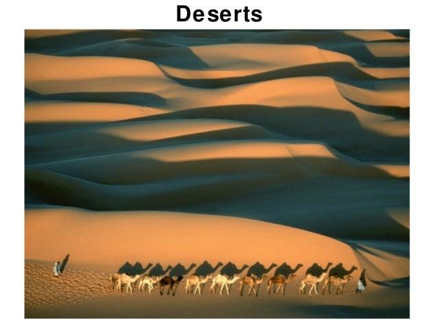 19 deserts forstudents