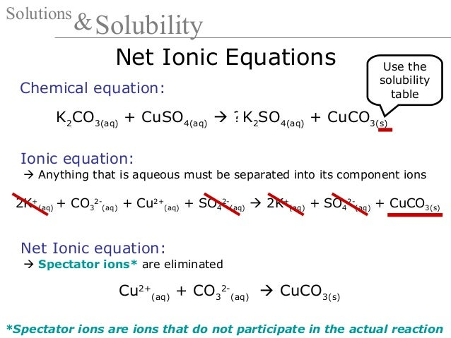 Ion and Net Ionic Equation - mgorka.com