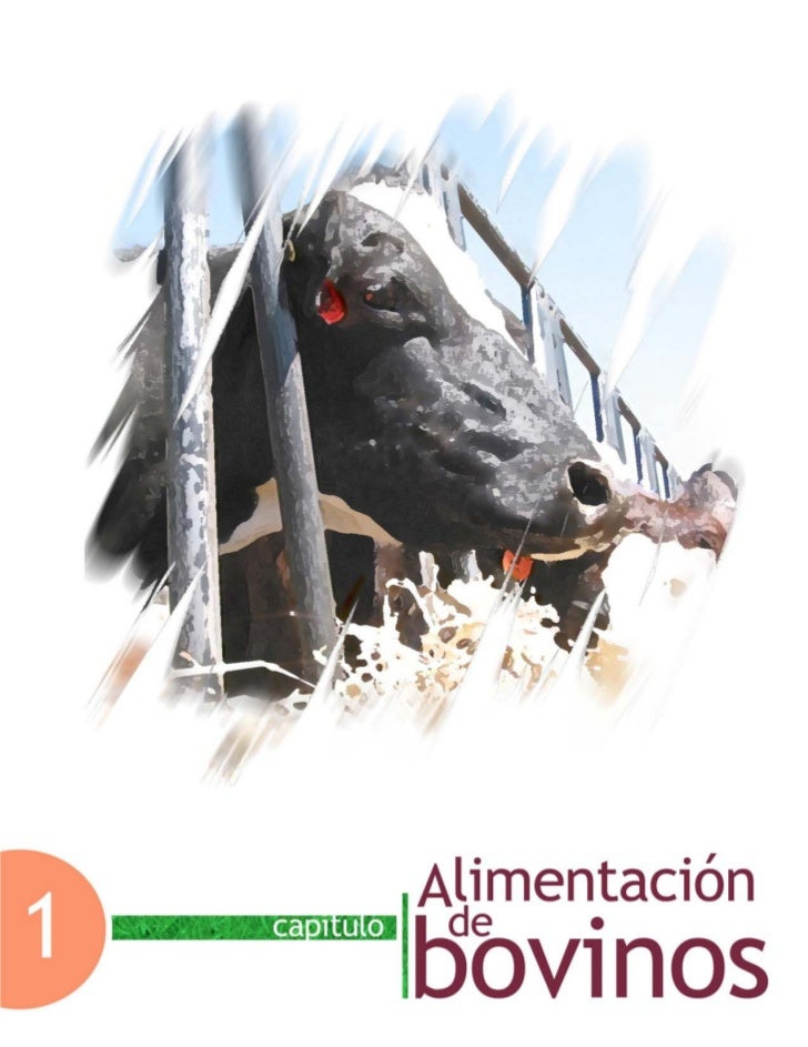 Capítulo 1. Alimentación de bovinosCapítulo 1. Alimentación de bovinos                                      Facultad de Me...