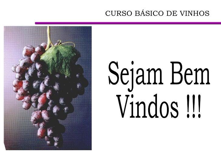 CURSO BÁSICO DE VINHOS   Sejam Bem  Vindos !!!