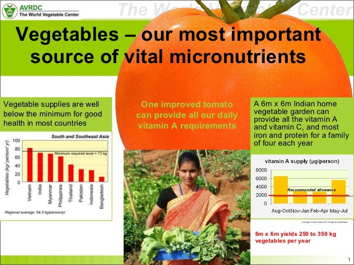 Vegetables – our most important source of vital micronutrients <ul><li>A 6m x 6m Indian home vegetable garden can provide ...
