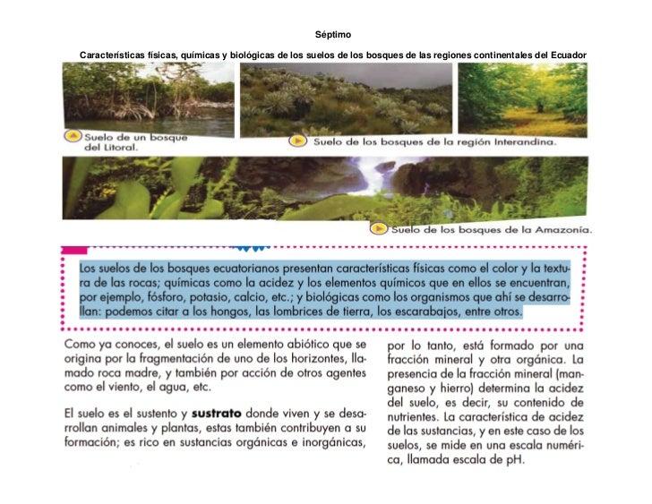 Ciencias naturales noviembre 2015 for Caracteristicas de los suelos