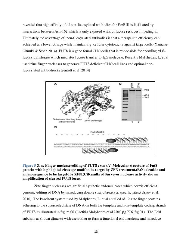 thesis on bioterrorism Proposal for a thesis  harvard university extension school february 1, 2015 michael jones  , including diagnosis and bioterrorism (ansar.