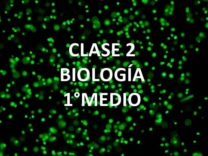 1° Bio   Clase 2 - Biomoléculas