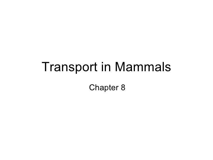 Transport in Mammals Chapter 8